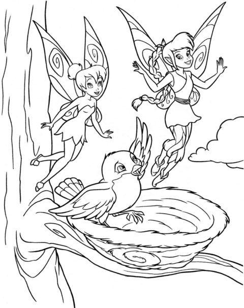 desenhos-da-tinkerbell-para-colorir-16
